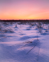 Winter Grassland Sunset