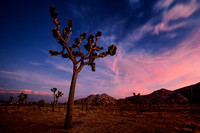 Nightfall in the Desert - California Landscape Photograph